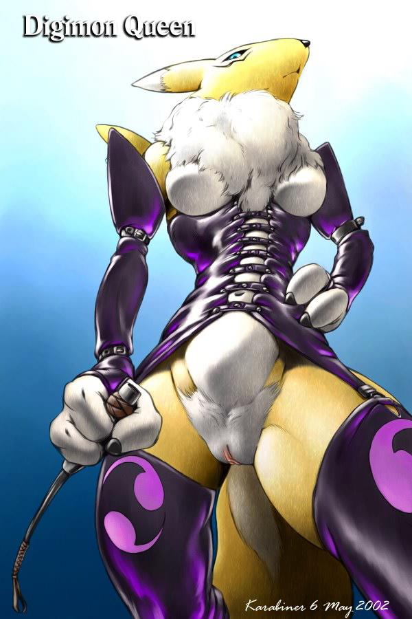 Ychan - f - renamon - uncensored image 12